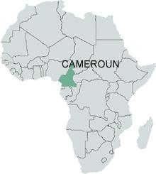 La localisation du Cameroun dans l'Afrique