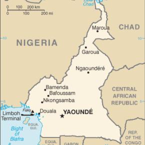 Cameroun: Aucun procès pour les 53 personnes arrêtées àBafoussam