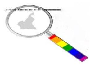 Cameroun: 7 personnes LGBT en prison; 58abus