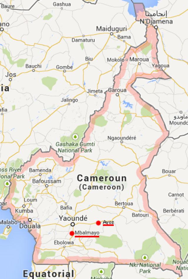Cameroun: calvaire d'un élève ambitieux pour son homosexualité