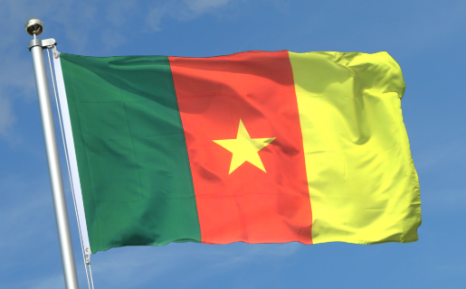 Cameroun : face à la pression parentale, elle tente de se suicider