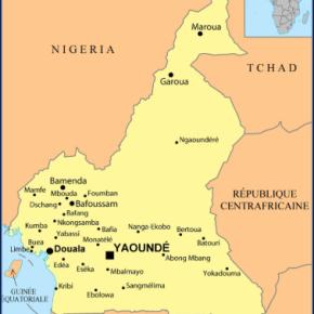 DÉFENSEURS SANS FRONTIÈRES Cameroun : DSF obtient enfin son récépissé de déclaration : Nouvel engagement!