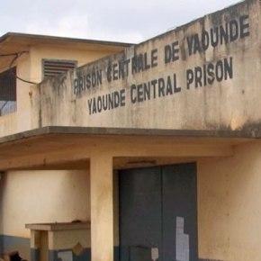 Cameroun : Aidez-nous à faire sortir de prison 11 victimesLGBT