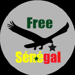 Le Collectif Free du Sénégal : 1 an de lutte contre les LGBTphobies au Sénégal!
